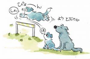 ハードルを越える犬っころ