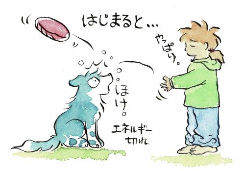 2008年11月15日・ディスク大会レポ―ト