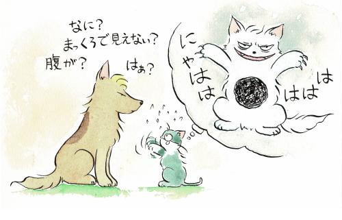 犬のアタマは食べ物だらけ・猫の腹は黒い