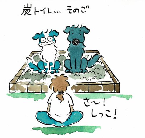 お犬さま用竹炭トイレ