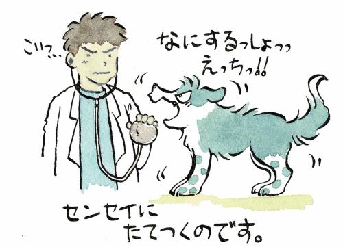 犬vs獣医さん