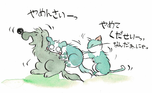 犬のけんかを止める猫