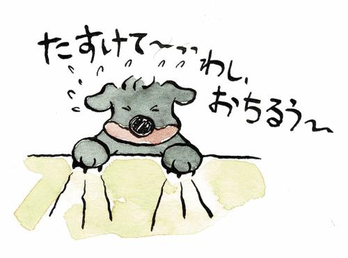 落ちそうな犬