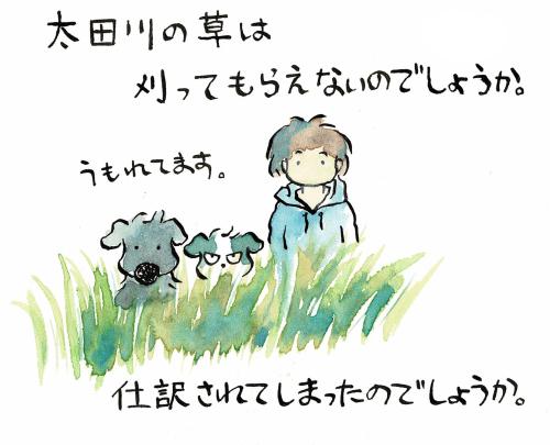 草にうもれてしまう犬っころたち