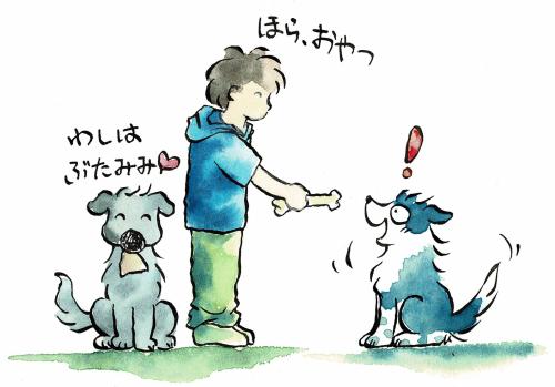 犬のおやつ