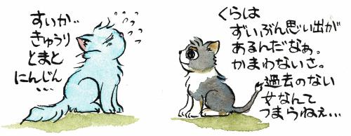 たくさん思い出のある猫