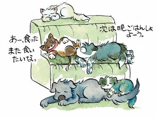 ソファでくつろぐ犬猫