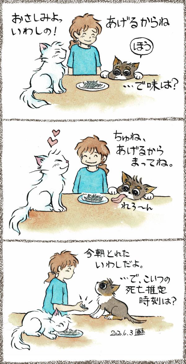 犬漫画 「新鮮ないわしのおさしみ」