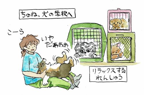 犬の学校・リラックス