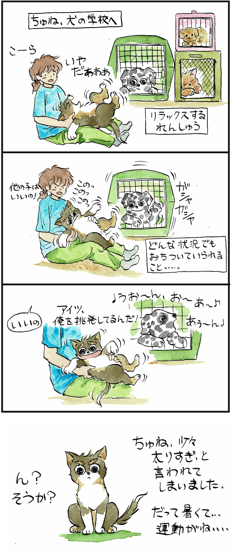 犬の学校・リラックスの練習
