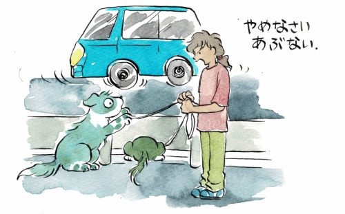 車に興味津々の犬